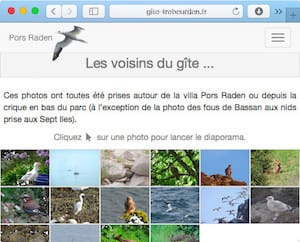 Photos des animaux observables